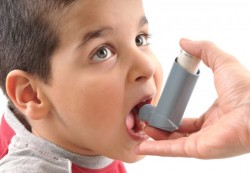 Детская астма и тараканы