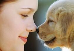 Животное в доме — и ребёнок здоров
