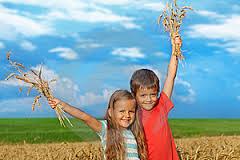 Разработан новый подход к лечению аллергии на пшеницу у детей