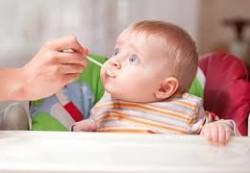 Первый прикорм: на заметку родителям