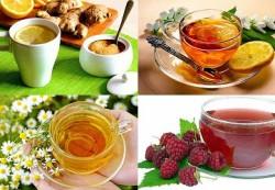 Простые средства от простуды — народная медицина