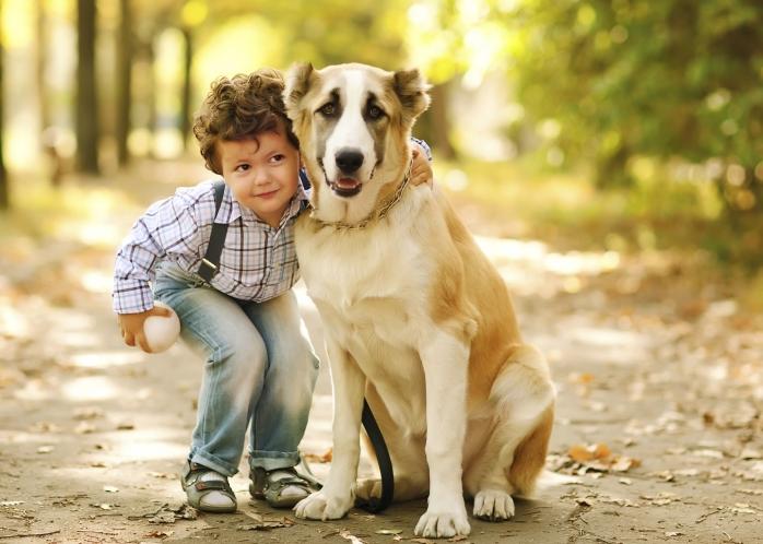 Как воспитать вежливость у детей и взрослых