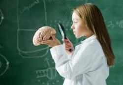 Учёные выяснили, как дети учатся считать