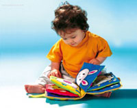 Книжки-игрушки