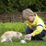 Собака защищает ребенка от детских страхов