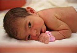Поведение новорожденных