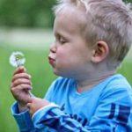 Воспитание ребенка на втором году жизни