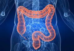 Можно ли сделать МРТ кишечника вместо колоноскопии?