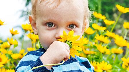 Мифы о детской аллергии: об анализах-пустышках, лечении уколами и натуральной косметике