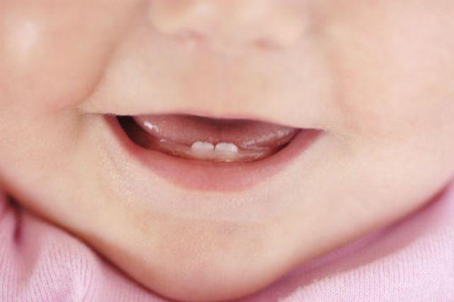Когда режутся зубки