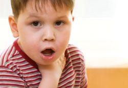Контакты с домашними животными уменьшают риск развития астмы у детей