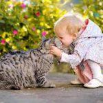 Как научить малыша доброте