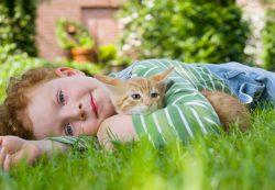 «После мультика про кота сын стал мяукать»