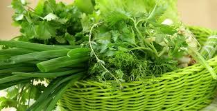Вся зелень огородная