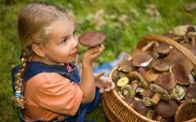 Можно ли давать малышам грибы?