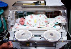 В реанимации с мамой: как выхаживают недоношенных детей сегодня