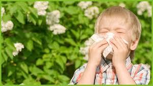 Что делать, если ребенок — аллергик