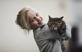 Кошки и малышки