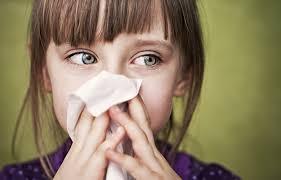 Аллергия на плесень, аллергия на полынь. Какая аллергия бывает в августе и осенью