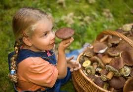 Можно ли давать детям грибы: советы диетологов