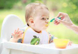 Чем и как кормить ребенка от 1 до 2 лет