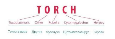 О TORCH-инфекциях