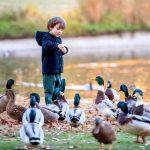 Чтобы лето было в радость: 5 правил для тех, кто хочет защитить себя и своего ребенка