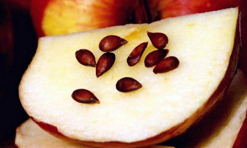 Яблоки и еще 6 фруктов, которые нельзя есть с зернышками