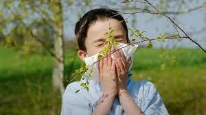 Почему так много детей-аллергиков в развитых странах?